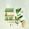 Growing in the Way: The Spiritual Practices of Jesus