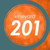 Vineyard 201: Our Approach to Spiritual Health