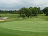Co-Ed Golf