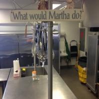 Martha's Team