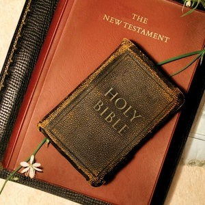 Study Through The Book of Colossians