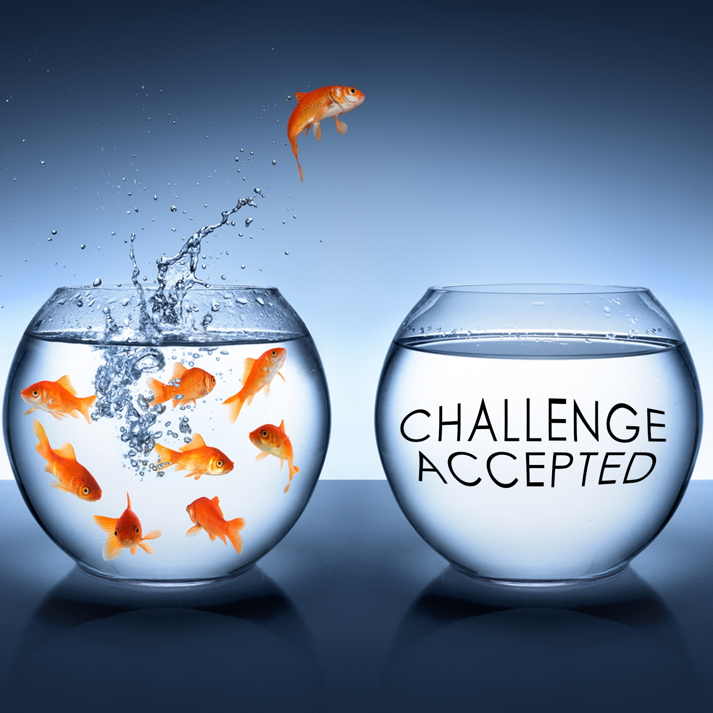 Take a New Challenge, Make a New Life