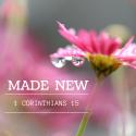 MADE NEW - 1 Corinthians 15